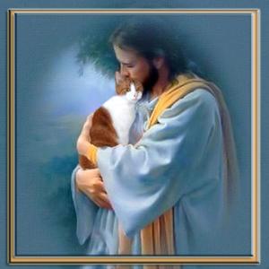 Jesus and Cat_610165_1387297746