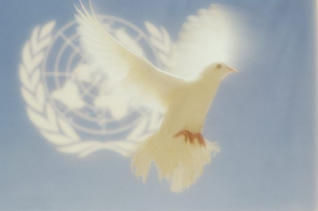 peace-dove-and-planet_78485575
