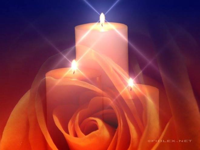 rose-and-three-candles_dsc01710